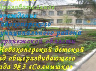 Муниципальное казенное дошкольное образовательное учреждение Новохоперского