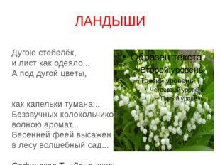 ЛАНДЫШИ Дугою стебелёк, и лист как одеяло... А под дугой цветы, как капельки