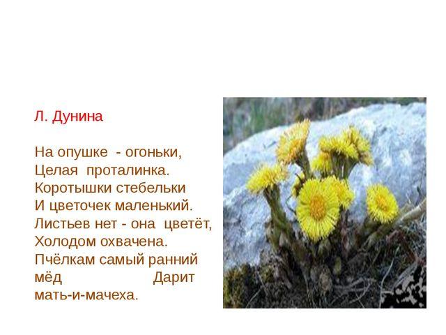 Л. Дунина На опушке - огоньки, Целая проталинка. Коротышки стебельки И цвето...