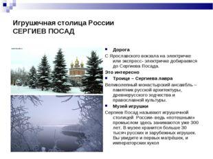 Игрушечная столица России СЕРГИЕВ ПОСАД Дорога С Ярославского вокзала на элек