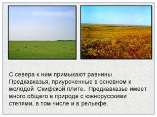 С севера к ним примыкают равнины Предкавказья, приуроченные в основном к моло
