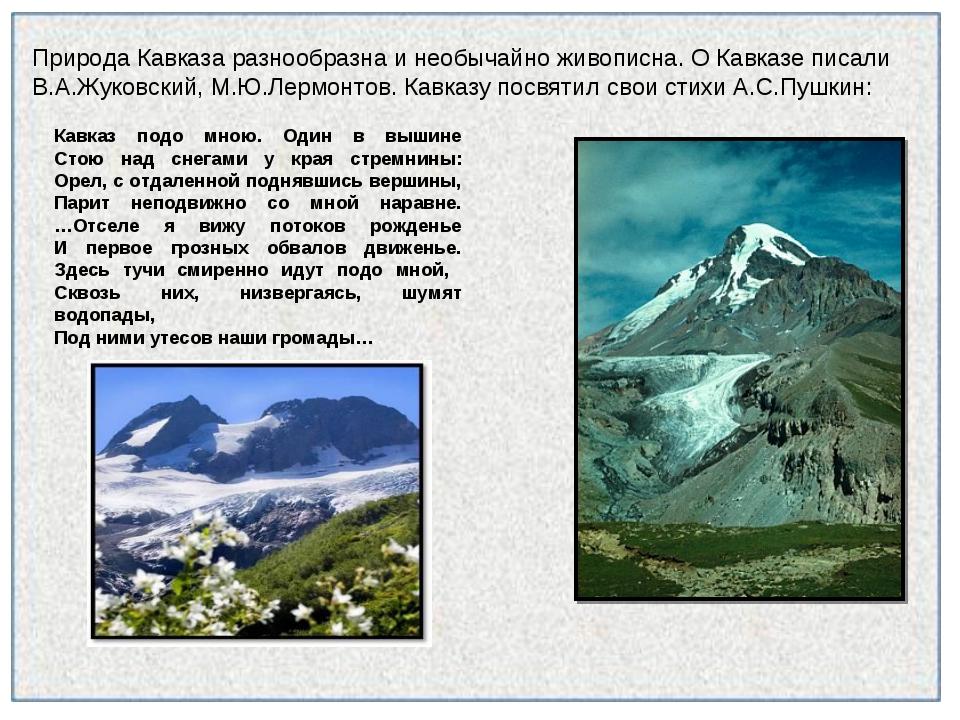 Природа Кавказа разнообразна и необычайно живописна. О Кавказе писали В.А.Жук...