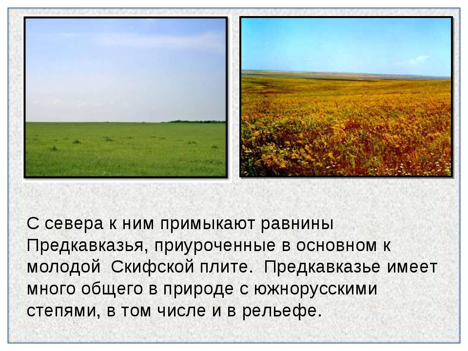 С севера к ним примыкают равнины Предкавказья, приуроченные в основном к моло...