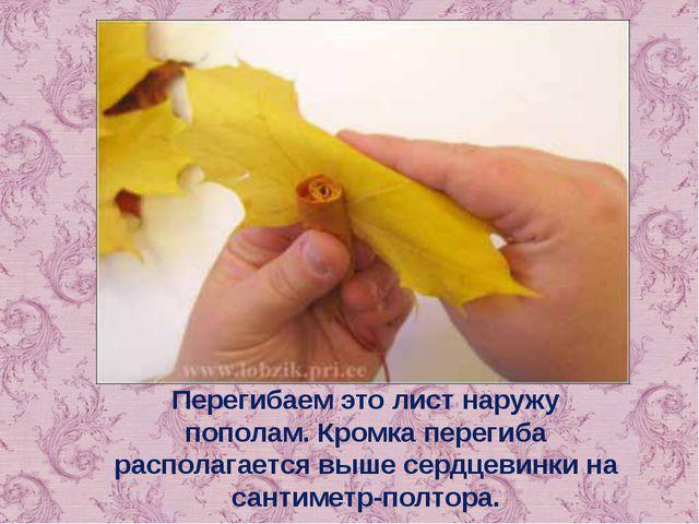 Перегибаем это лист наружу пополам. Кромка перегиба располагается выше сердце...