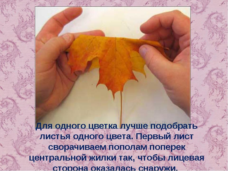 Для одного цветка лучше подобрать листья одного цвета. Первый лист сворачивае...
