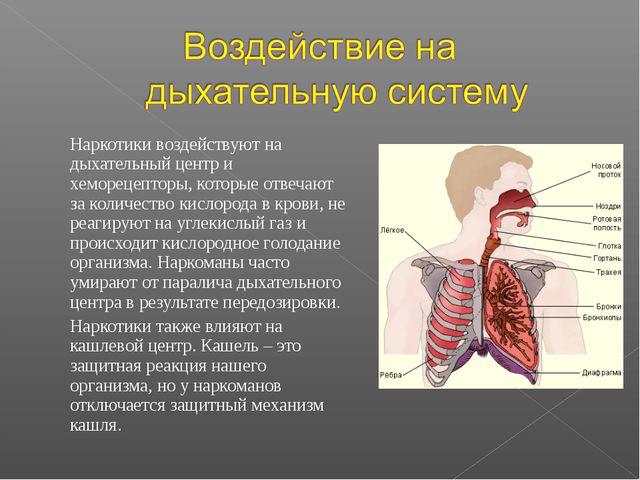 Наркотики воздействуют на дыхательный центр и хеморецепторы, которые отвеч...