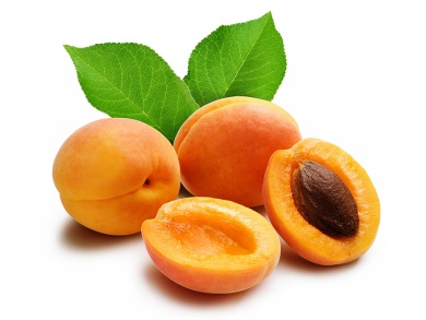 http://www.salata.ge/wp-content/uploads/2012/11/apricots.jpg