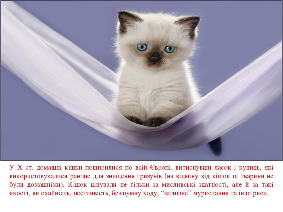 У X ст. домашні кішки поширилися по всій Європі, витиснувши ласок і куниць,...