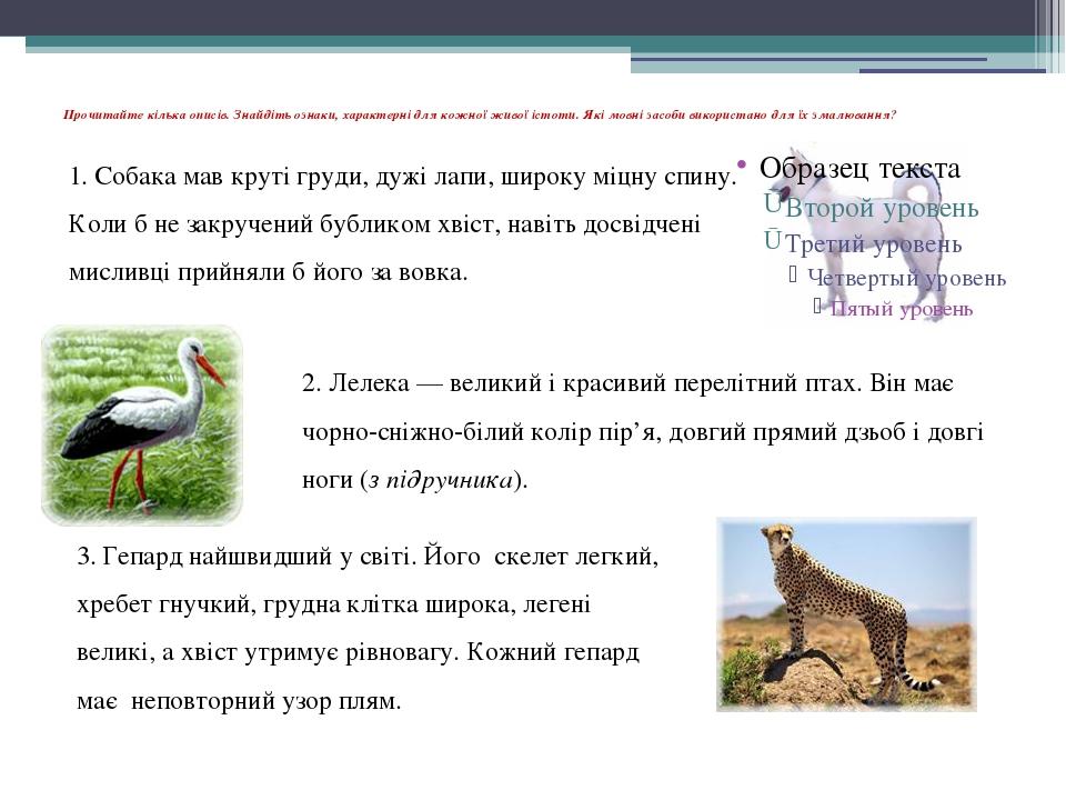 Прочитайте кілька описів. Знайдіть ознаки, характерні для кожної живої істоти...