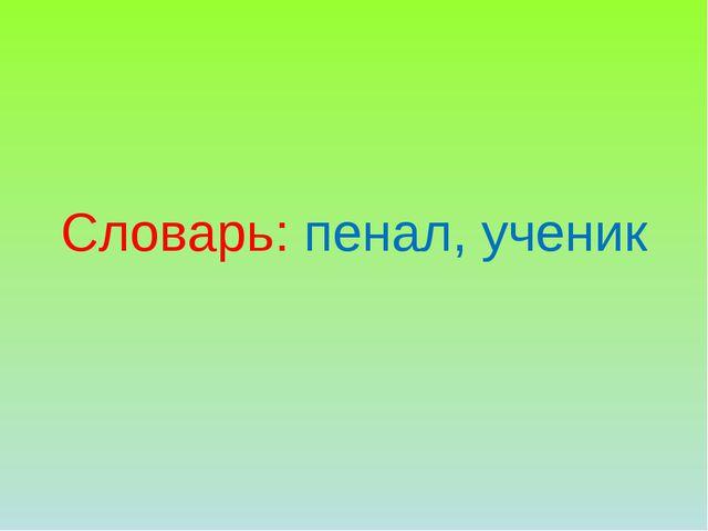 Словарь: пенал, ученик