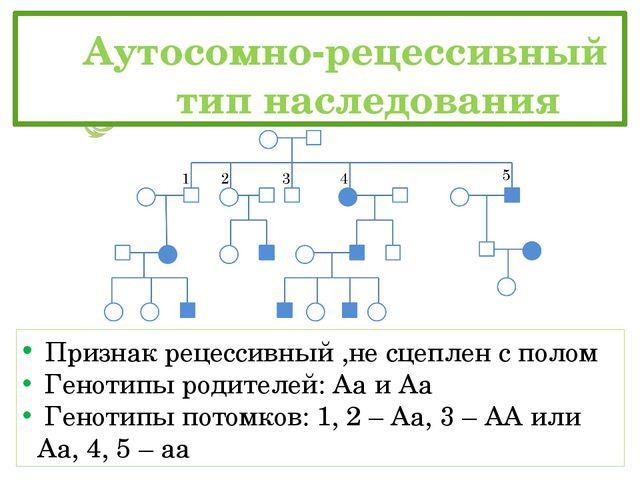 Аутосомно-рецессивный тип наследования Признак рецессивный ,не сцеплен с...