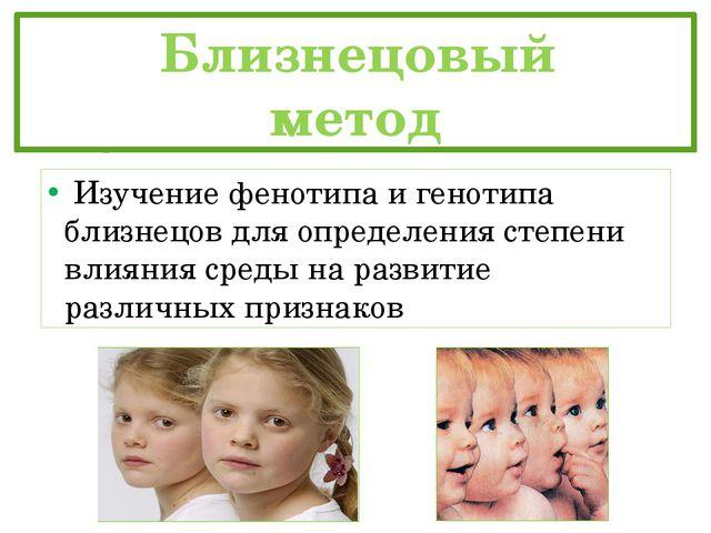 Близнецовый метод Изучение фенотипа и генотипа близнецов для определени...