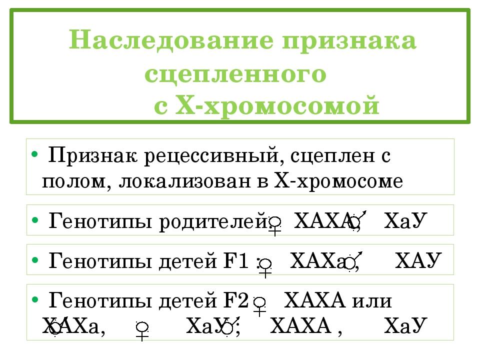 Наследование признака сцепленного  с Х-хромосомой Признак рецессивный, сц...