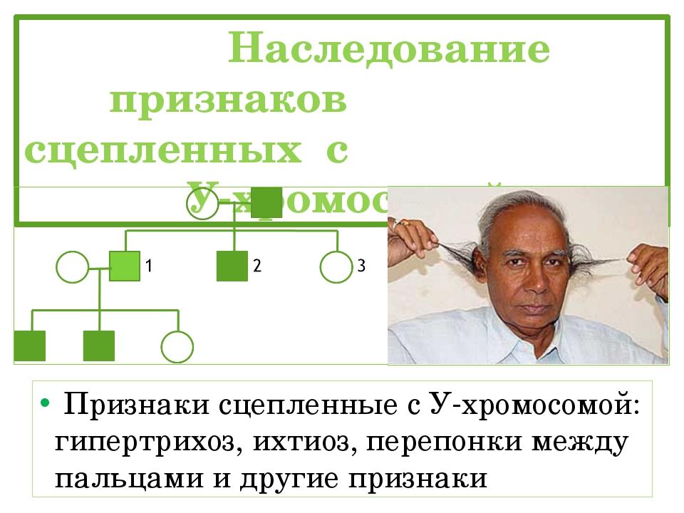 Наследование признаков сцепленных с У-хромосомой Признаки сцепленные с У-хро...