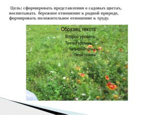 Цель: сформировать представления о садовых цветах, воспитывать бережное отно