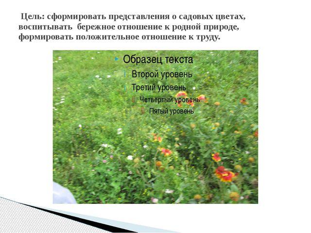 Цель: сформировать представления о садовых цветах, воспитывать бережное отно...