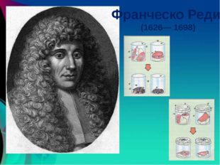 Франческо Реди (1626— 1698) http://coollib.net/i/60/261460/i_007.jpg http://i