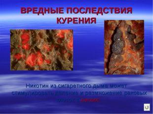 ВРЕДНЫЕ ПОСЛЕДСТВИЯ КУРЕНИЯ Никотин из сигаретного дыма может стимулировать д
