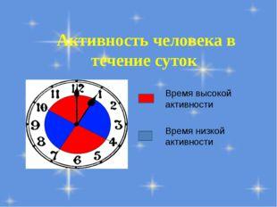 Активность человека в течение суток Время высокой активности Время низкой акт