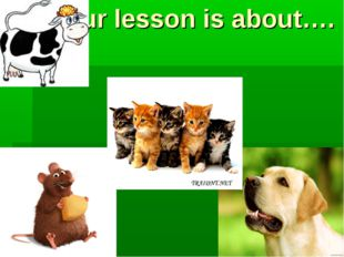 Our lesson is about….