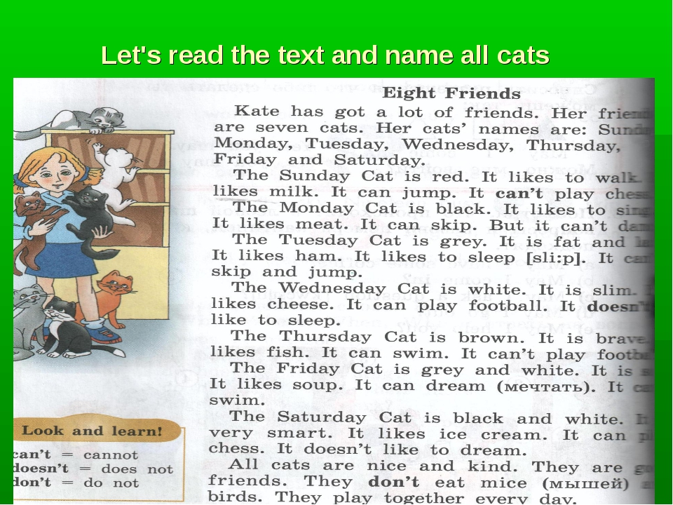 Let's read the text and name all cats