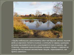 «Пруды небольшие, расположены один над другим, весной лишняя вода из верхнего