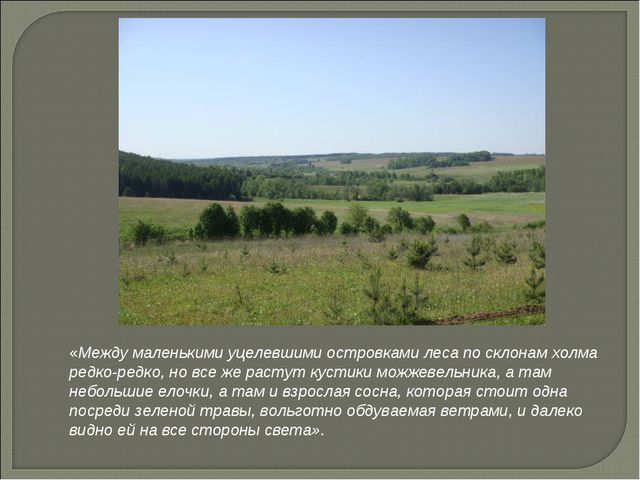 «Между маленькими уцелевшими островками леса по склонам холма редко-редко, но...