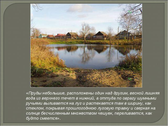 «Пруды небольшие, расположены один над другим, весной лишняя вода из верхнего...
