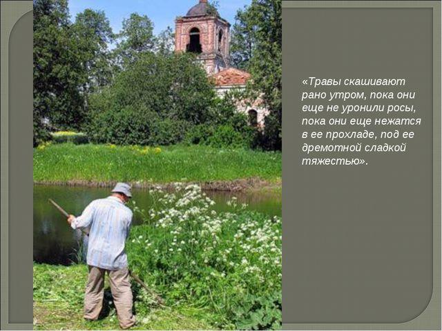 «Травы скашивают рано утром, пока они еще не уронили росы, пока они еще нежат...