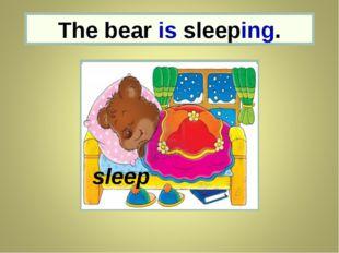the bear The bear is sleeping. sleep