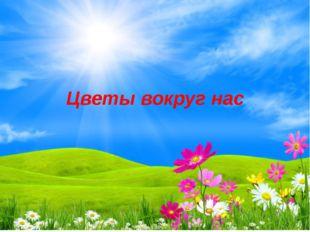 Цветы вокруг нас