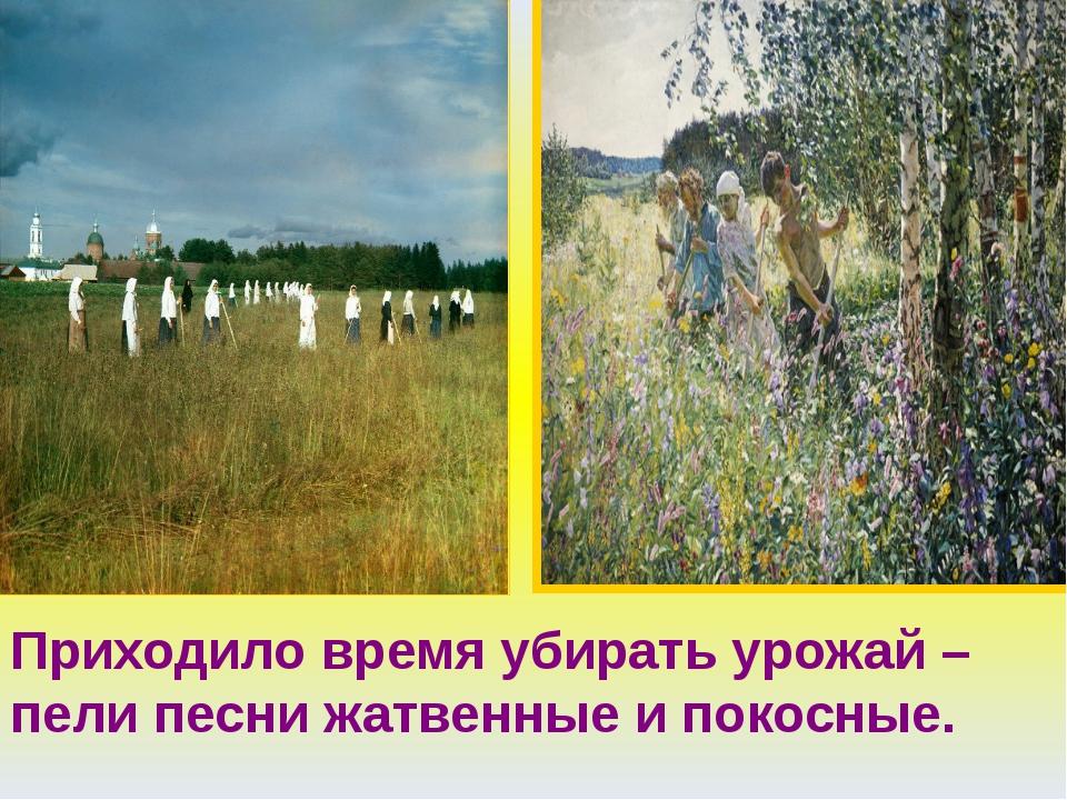 Приходило время убирать урожай – пели песни жатвенные и покосные.