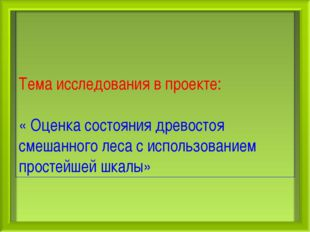 Тема исследования в проекте: « Оценка состояния древостоя смешанного леса с и
