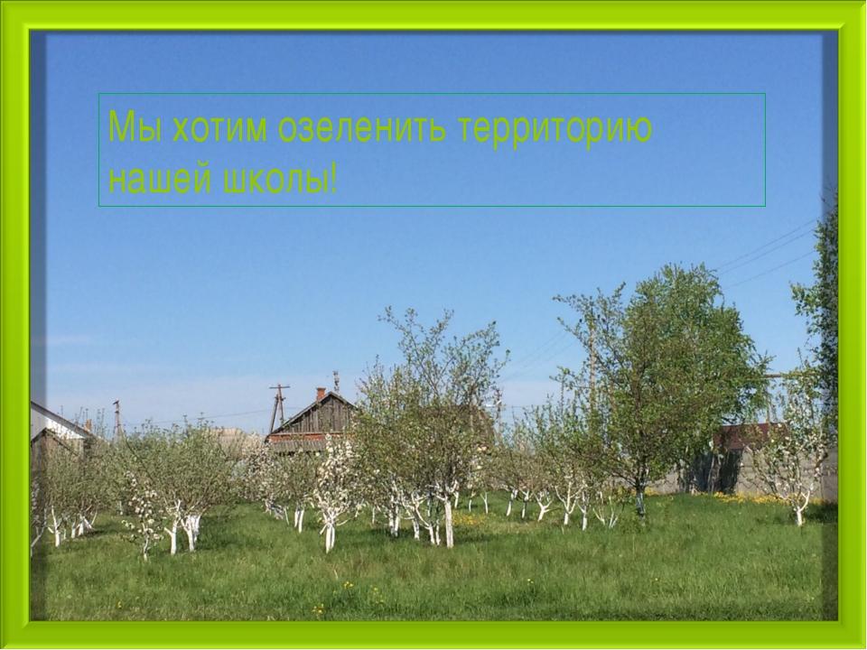 Мы хотим озеленить территорию нашей школы!