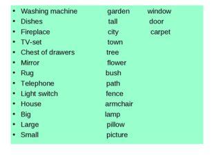 Washing machine garden window Dishes tall door Fireplace city carpet TV-set t