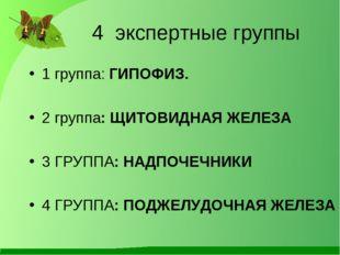 4 экспертные группы  1 группа: ГИПОФИЗ. 2 группа: ЩИТОВИДНАЯ ЖЕЛЕЗА 3 ГРУП