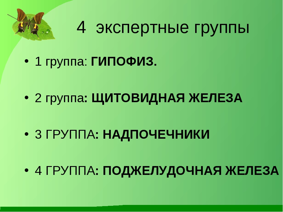 4 экспертные группы  1 группа: ГИПОФИЗ. 2 группа: ЩИТОВИДНАЯ ЖЕЛЕЗА 3 ГРУП...