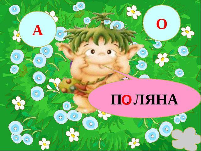 П . ЛЯНА А О О