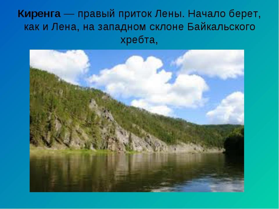 Киренга— правый приток Лены. Начало берет, как и Лена, на западном склоне Ба...