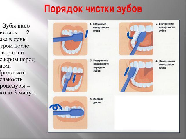 Порядок чистки зубов Зубы надо чистить 2 раза в день: утром после завтрака и...