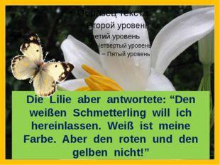 """Die Lilie aber antwortete: """"Den weißen Schmetterling will ich hereinlassen."""