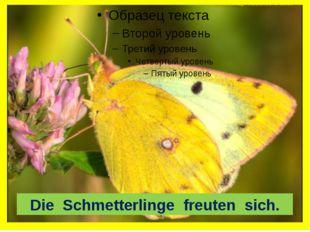 Die Schmetterlinge freuten sich.