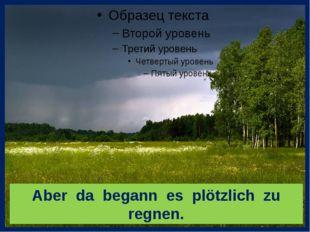 Aber da begann es plötzlich zu regnen.