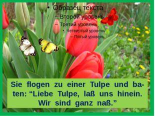 """Sie flogen zu einer Tulpe und ba- ten: """"Liebe Tulpe, laß uns hinein. Wir sin"""