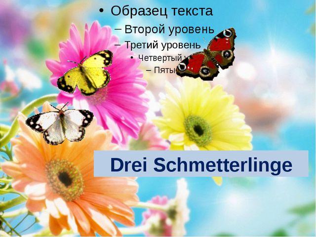 Drei Schmetterlinge
