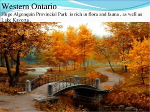 Western Ontario Huge Algonquin Provincial Park is rich in flora and fauna , a