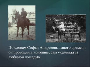 По словам Софьи Андреевны, много времени он проводил в конюшне, сам ухаживал