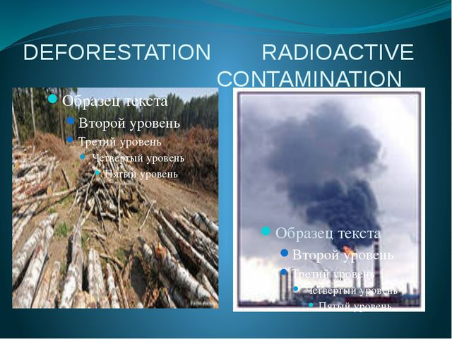 DEFORESTATION RADIOACTIVE CONTAMINATION