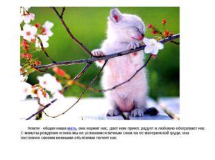 Земля - общая наша мать, она кормит нас, дает нам приют, радует и любовно об