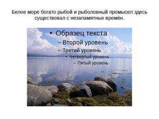Белое море богато рыбой и рыболовный промысел здесь существовал с незапамятны